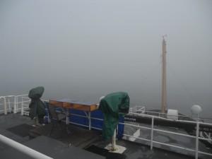 fog research vessel big eyes whale watch