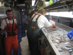 Heith Cook in  fish processing lab