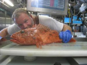 Will Duffy studies a spinycheek scorpionfish
