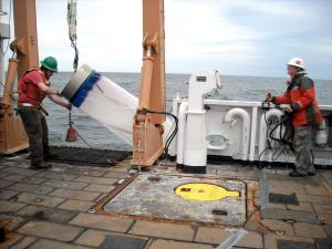 Bongo net brought aboard ship
