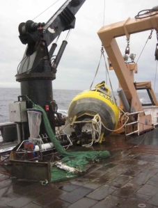 Cleaned buoy secured on deck.