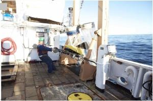 VPr andf bongo nets hauled aboard