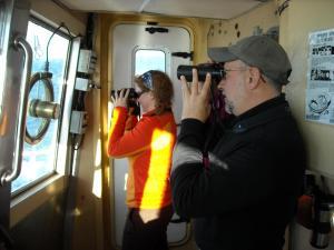 bird observers