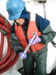 filtering seawater