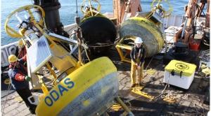 buoys on back deck