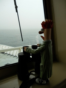 Beaker surveying the fog. Photo by Allison Henry, NEFSC/NOAA