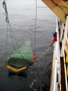 trawl net retrieval
