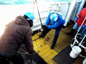 deck grating