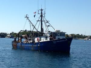researcy vessel Gloria Michelle