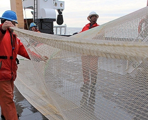 retuireiving a trawl net aboard ship