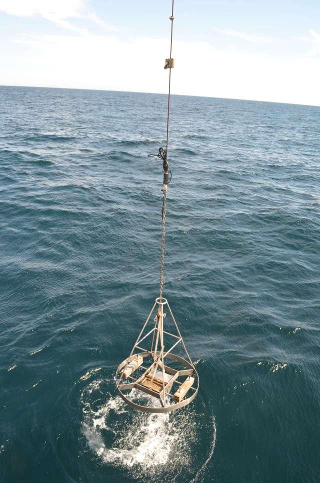 DSC_0012a Guida Benthis Habitat cruise.jpg
