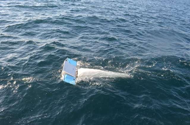 DSC_0080a guida benthic habitat cruise.jpg