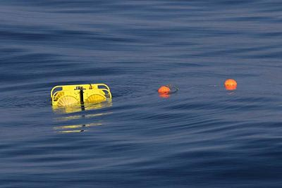 yellow recording device and orange floats bobbing on the surface ot he water