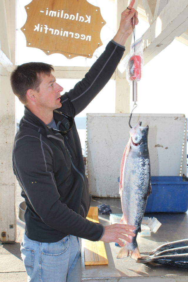 greenland_2259_ggoulette_ weighs_salmon