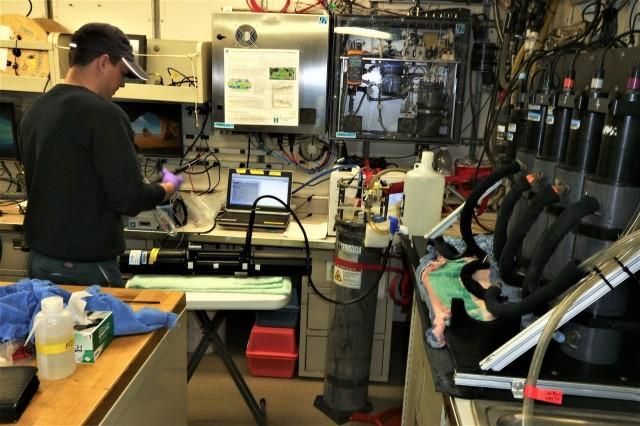 HB1902 CTD Lab Kyle rd